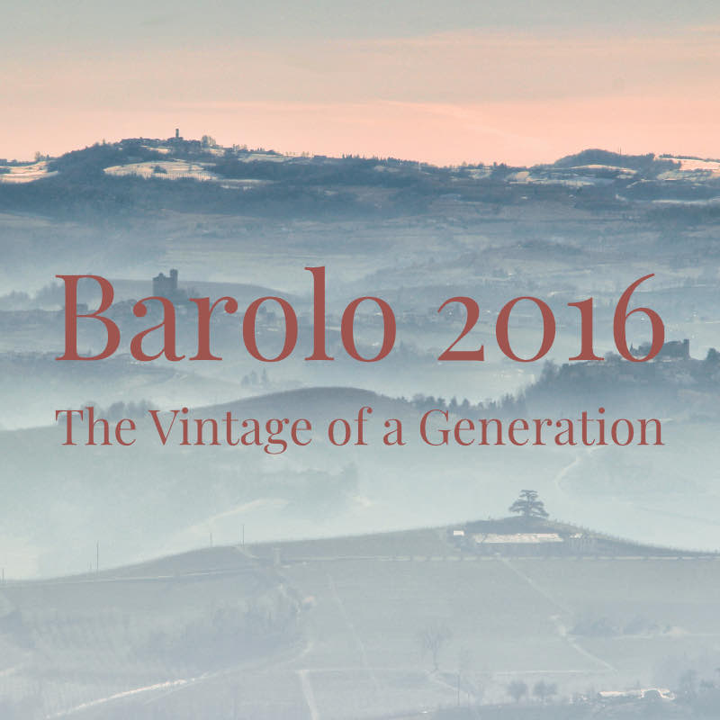 2016 Barolo Opening Offers