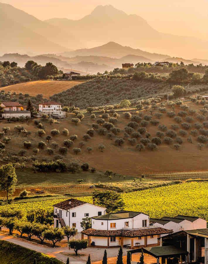 Wines of Abruzzo